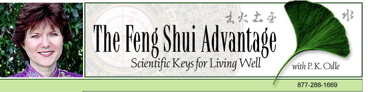 Feng Shui Advantage